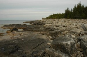 Shingle_Beach_Bruce_Pen_Nat_Park