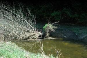 Erosion_Maskinonge_River