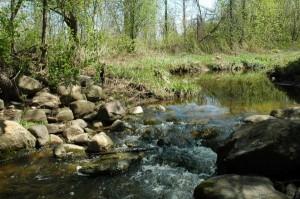 Riffle_Maskinonge_River